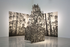 Jennifer Basile. Osceola Pines, 2014. Relief print and wood. 8 x 20 feet. Courtesy of LnS Gallery.