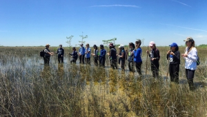 FIU Honors College students in Everglades National Park (Photo by JW Bailly CC BY 4.0)